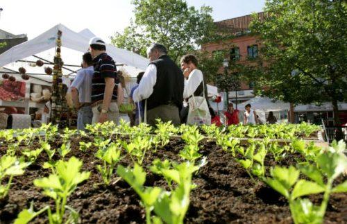 EU schützt geografische Angabe von Lebensmitteln noch stärker