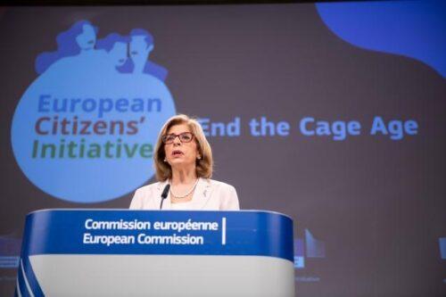"""""""End the Cage Age"""": Europäische Kommission will Käfighaltung beenden und registriert zwei weitere Bürgerinitiativen"""