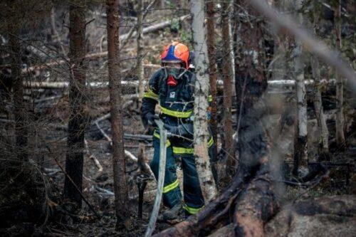 EU hilft Italien, Griechenland, Albanien, Nordmazedonien und Türkei bei Bekämpfung von Waldbränden