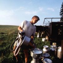 Landwirtschaft: EU verlängert Hilfen für den Milchsektor